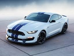 Filtry do Ford Mustang Shelby GT350
